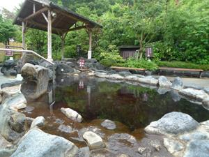 """翌週に疲れをもちこさない:都内の""""天然温泉""""で一週間をリセット 4番目の画像"""