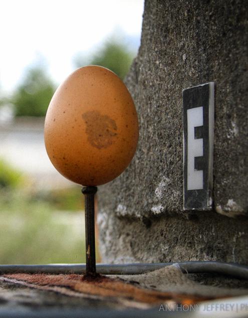 """コロンブスもビックリ? いとも容易く卵が立つ""""赤道""""直下の不思議を解明! 3番目の画像"""