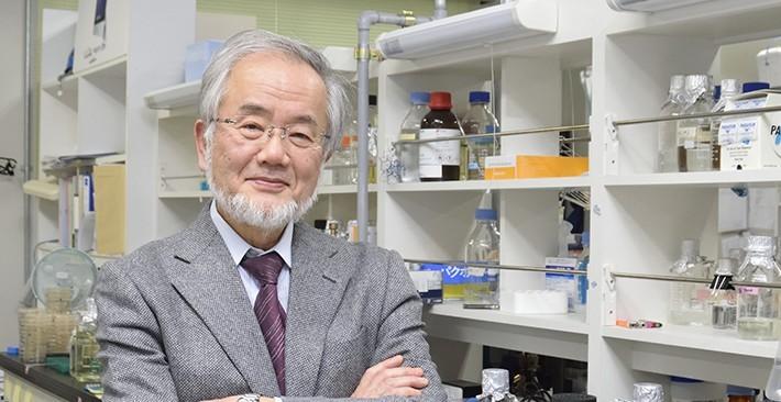 「役に立つという言葉が社会を駄目にしている」:ノーベル賞受賞・大隅良典氏が危惧する科学研究の今 1番目の画像