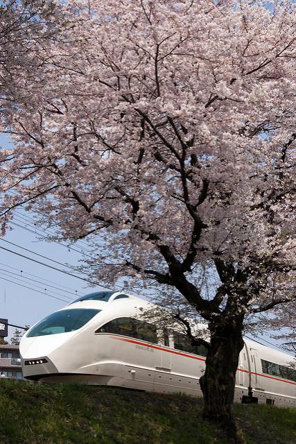 通勤特急・複々線化…東京に密集する私鉄たち:沿線価値向上のため、熾烈な争いがスタート! 3番目の画像