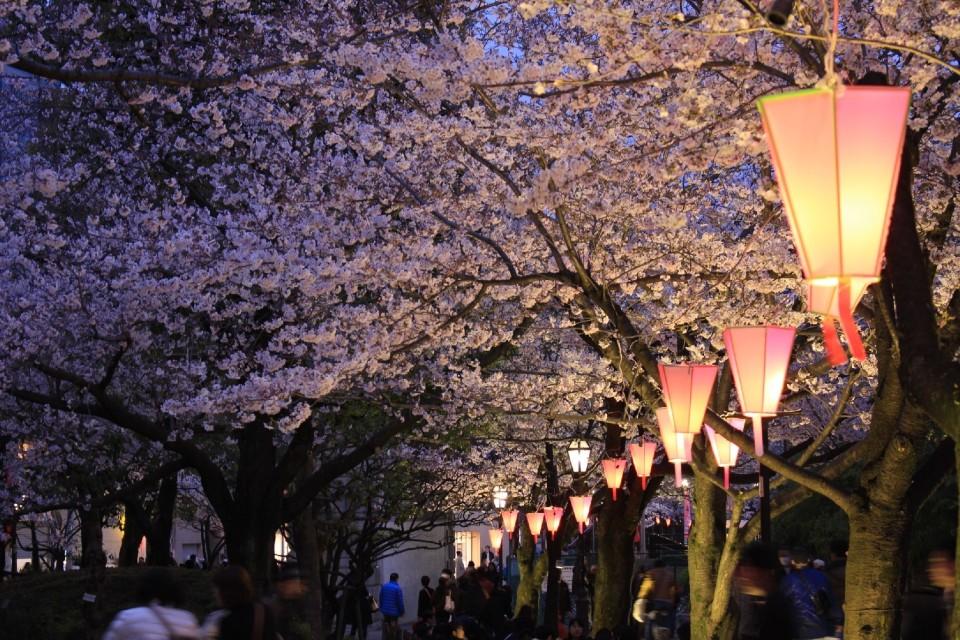 定番でも場所取りしやすい穴場!宴会可能な東京都内の花見スポット6選&花見の持ち物 3番目の画像