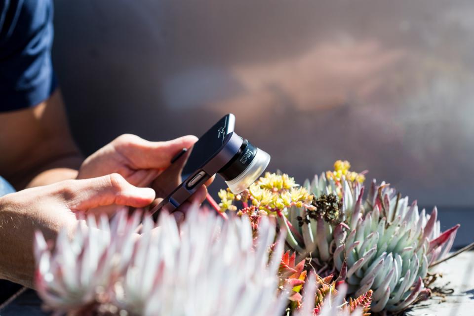 スマホで一眼レベルの写真を撮りたい! 世界最高峰レンズ「Exolens ZEISS」で彩る日常 1番目の画像