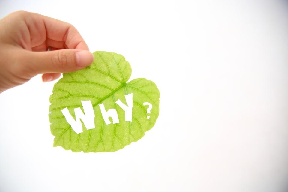 仕事に満足感がないすべての働く人へ。サイモン・シネックから学ぶ「Why」の大切さ 1番目の画像