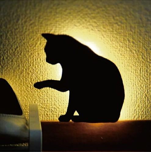 オトコの部屋に穏やかな時間を創造する、センスのいい間接照明 5番目の画像