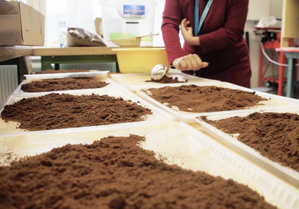 抽出後の豆かすがおしゃれに生まれ変わる、環境に優しいコーヒーカップで味わう至福の一杯 3番目の画像