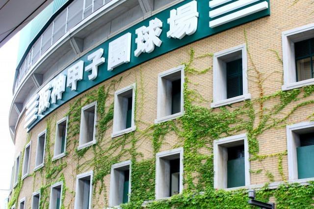 かちわり氷の売上は1日120万円!経済効果は351億円! 球場の内外で動く「夏の甲子園ビジネス」 3番目の画像