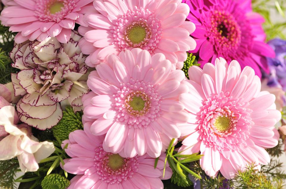 【花束の色に迷う人必見】送別会で送る花束を選ぶときに役立つ、男女別オススメの花色は? 3番目の画像
