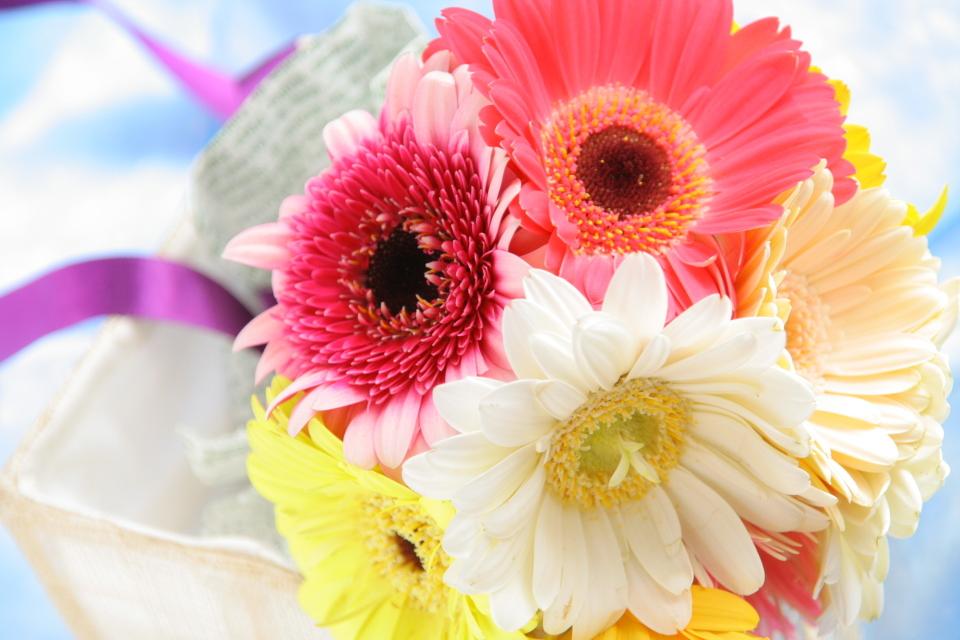 【花束の色に迷う人必見】送別会で送る花束を選ぶときに役立つ、男女別オススメの花色は? 1番目の画像