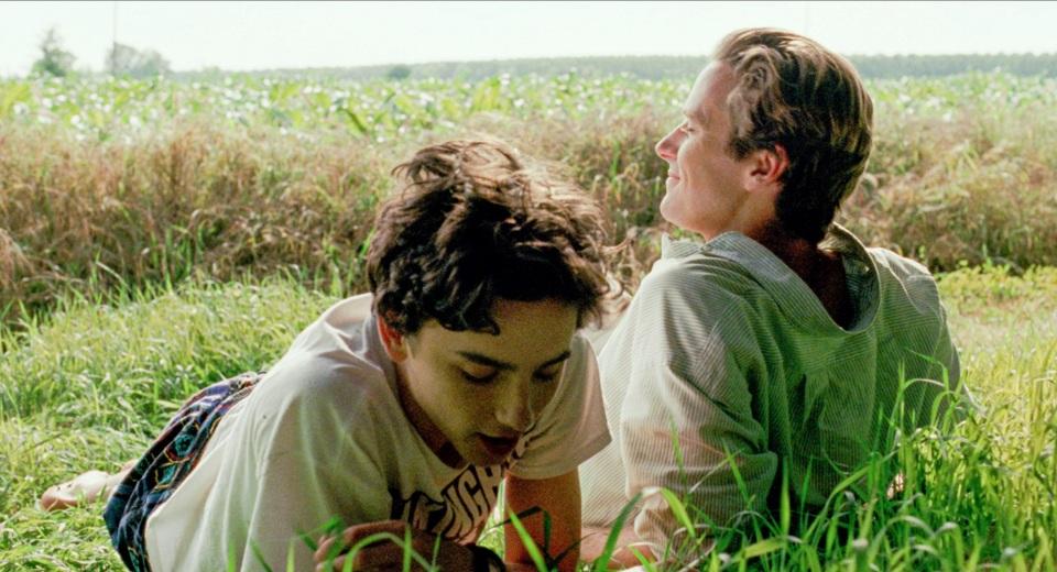 アカデミー賞レース第4弾|最年少での主演男優賞受賞に注目が集まる「君の名前で僕を呼んで」 2番目の画像