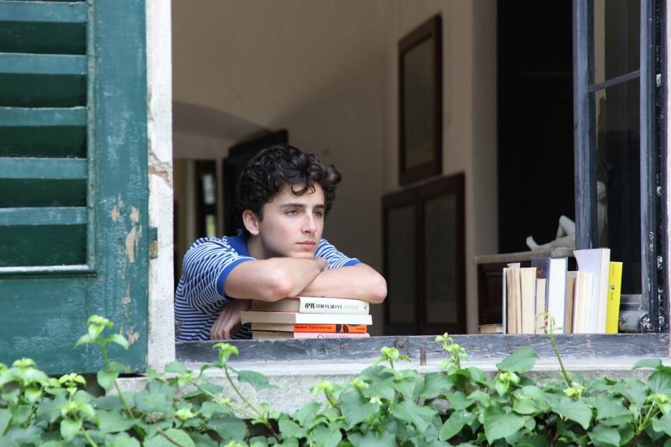 アカデミー賞レース第4弾|最年少での主演男優賞受賞に注目が集まる「君の名前で僕を呼んで」 3番目の画像