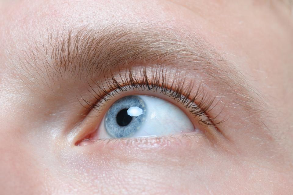 【眉毛の整え方】失敗しない男の眉毛カンタンお手入れ術&基本知識 6番目の画像