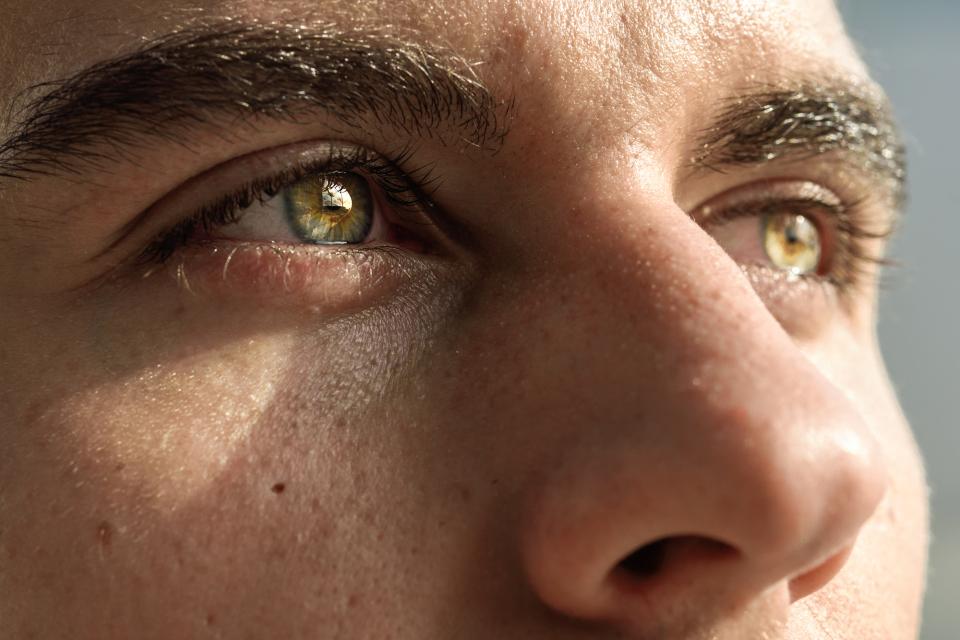 【眉毛の整え方】失敗しない男の眉毛カンタンお手入れ術&基本知識 5番目の画像