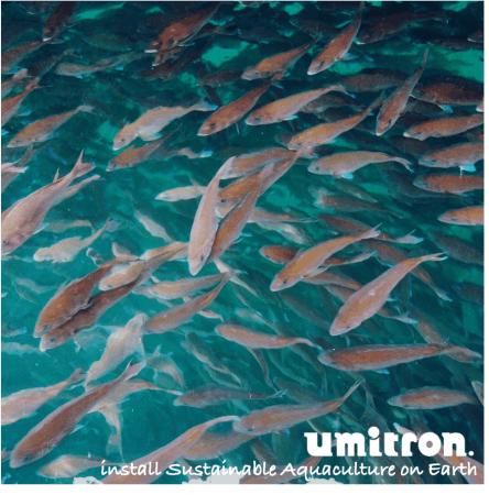 ウミトロンと宇宙航空研究開発機構が、気候変動観測衛星「しきさい」データの水産養殖向けPoC(概念実証)を実施 2番目の画像