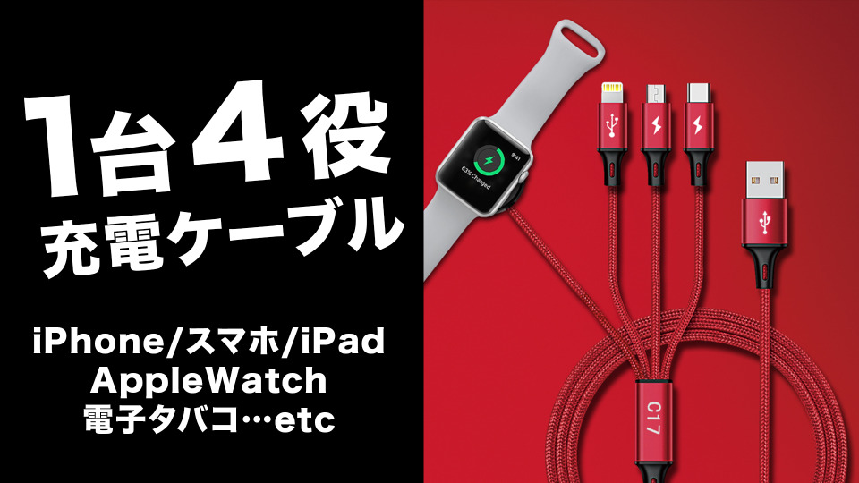 増える充電ケーブルを1つにまとめる「All-In-One Charger Cable C17」が先行発売 1番目の画像