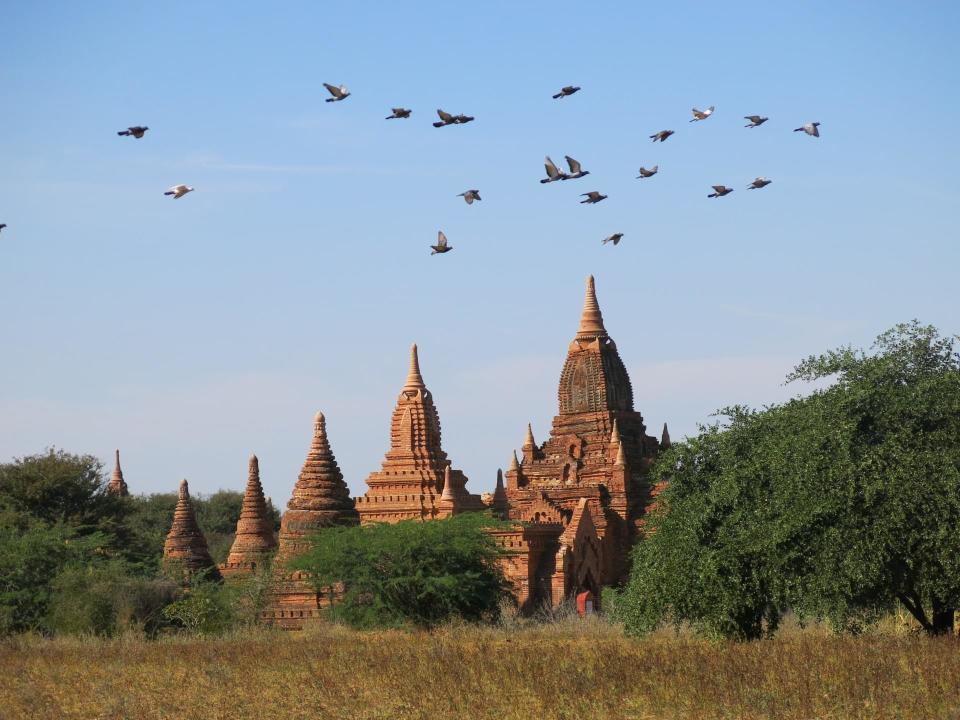 世界中に定額制住み放題サービス「HafH」に新拠点が追加。ベトナム・タンザニア・ミャンマーなど15拠点 3番目の画像