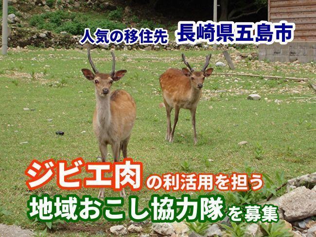 """長崎県五島市、ジビエ肉を活用できる「地域おこし協力隊」を募集中。3大都市圏在住の""""わな猟免許""""保有者が対象 1番目の画像"""