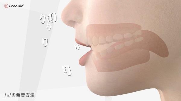 舌の動きまで丸見え!英語の発音方法を3DCGで再現した体験型英語発音教材「ネイティブの口」が登場 4番目の画像