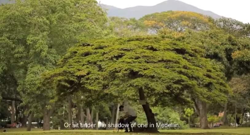 鳥の巣がある木から電子書籍が入手できる!コロンビアの通信会社が仕掛けた「読書率向上」大作戦 2番目の画像
