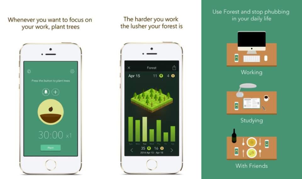 自分の集中力で森を育てる?集中力の持続時間を図れるアプリがシュールで面白い 2番目の画像