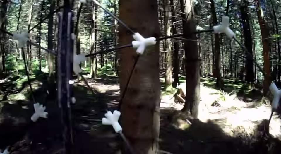 人にぶつかっても怪我させない。緩衝材搭載型ドローン「Gimball」が災害救助の常識を変える 3番目の画像