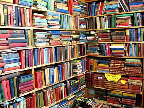 新書を読むには、本より先に本棚を買え! 最強の書評ブロガーが教える読書術『新書がベスト』 1番目の画像