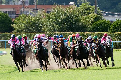 起業に成功したいなら馬主に学べ! 競馬を制す者がビジネスを制す…かもしれない 7番目の画像