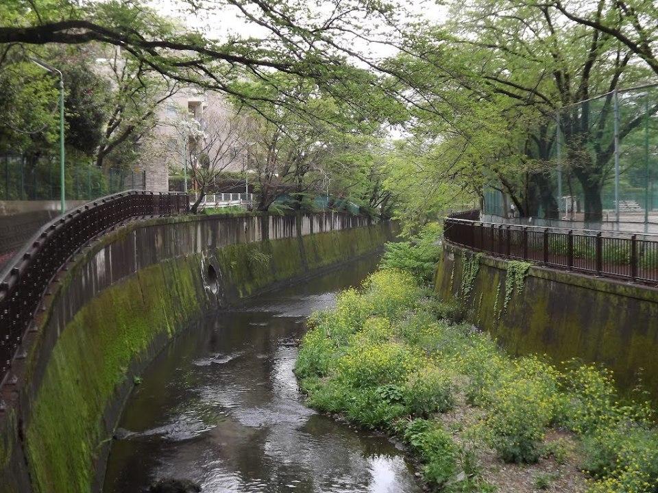 「住んでみたい高級住宅街ランキング」ベスト5:高級住宅街と言われる地には、◯◯な共通点があった! 4番目の画像