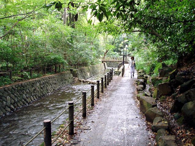 """都内から日帰りで羽が伸ばせる! 関東にある自然豊かな5つの""""避暑地"""" 3番目の画像"""