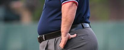 なぜ仕事ができない人に「肥満」が多いのか? 肥満がビジネスに及ぼす大きな影響 3番目の画像
