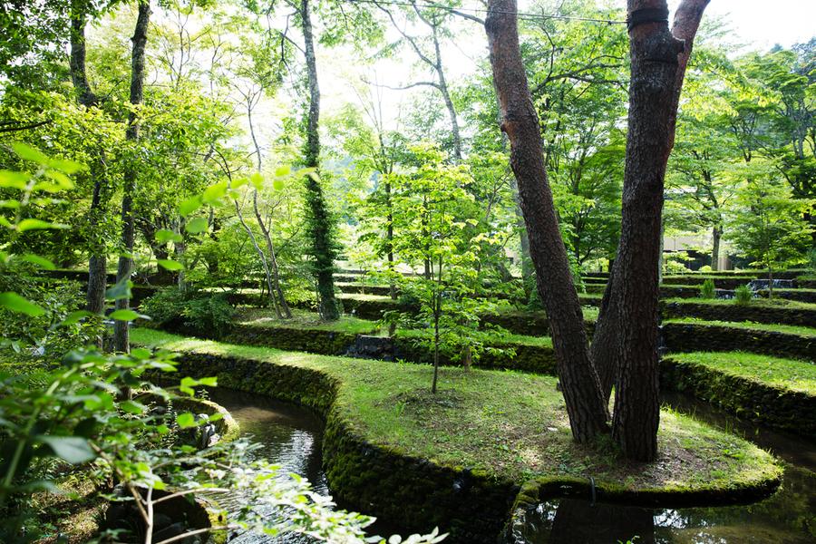 """「日本の四季こそが、21世紀に続く大切な資産」:星野リゾート代表が思い描く""""これからの日本"""" 8番目の画像"""