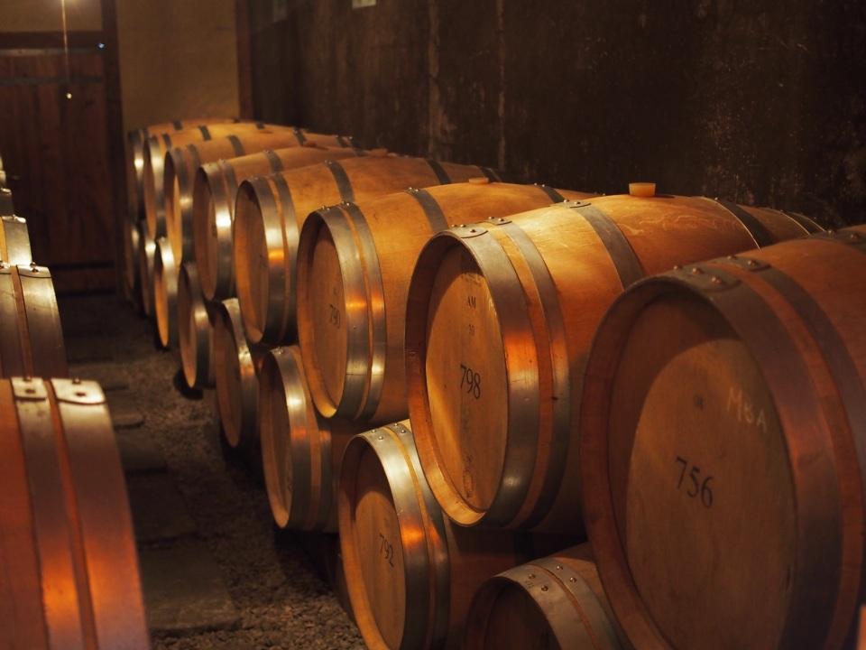 """酒類の消費量は20年前の約15%減:""""酒離れ""""が進むいま「日本ワイン」の販売量が増えるワケ 2番目の画像"""