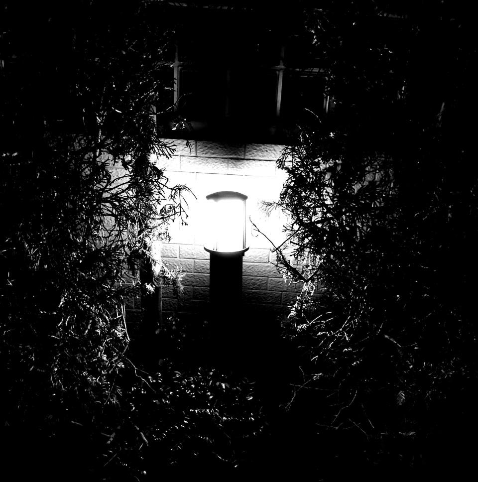 """【レビュー】見慣れた景色が""""アート""""に:SIMフリースマホ「HUAWEI Mate 9」 10番目の画像"""