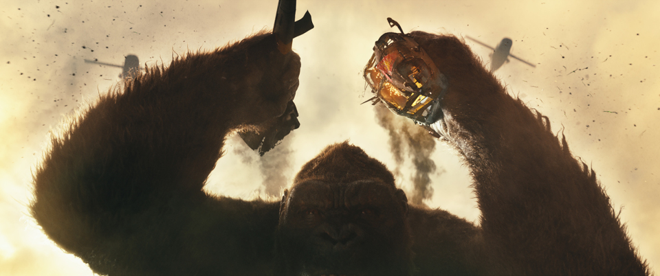 映画「キングコング」の最新作で盛り上がる広背筋と地響き伴う唸り声を視覚と聴覚でとらえよう!! 1番目の画像