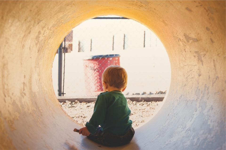日本のトンネル掘り技術は世界一:身近なモノに隠れていた「生き物」たちとの対面 2番目の画像