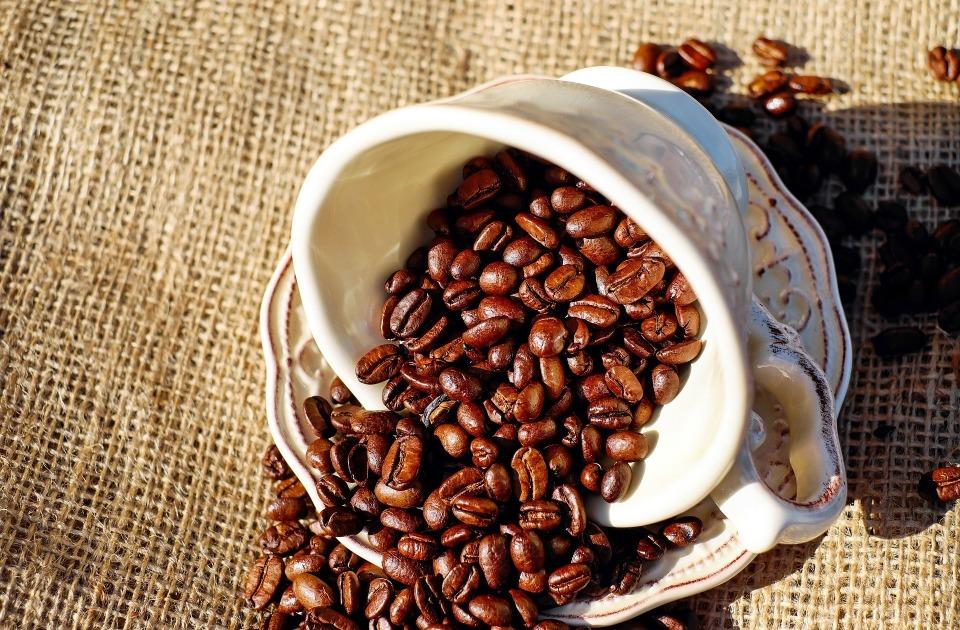 """コーヒー好きなら知ってて当然! """"動物のフン""""からできる高級コーヒー豆が新たなトレンドに? 1番目の画像"""