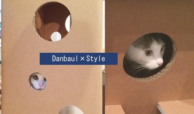 ニャンとも便利な組み立て家具! 強化ダンボールでできた猫まっしぐらな穴あきベンチ&スツール 2番目の画像