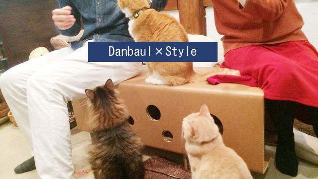 ニャンとも便利な組み立て家具! 強化ダンボールでできた猫まっしぐらな穴あきベンチ&スツール 6番目の画像