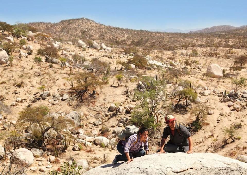 アメリカとメキシコの国境周辺で今何が起きているか?異色サスペンス「ノー・エスケープ」の恐怖度 3番目の画像