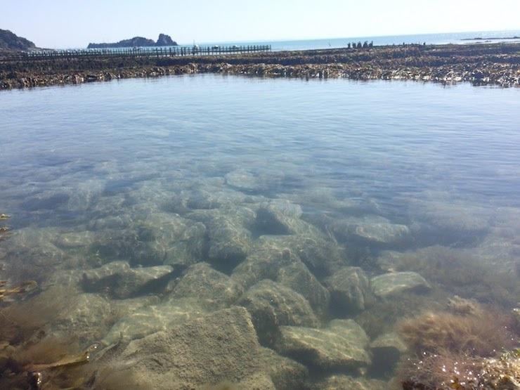 フランスの生牡蠣は日本と違う?ルイ14世も愛した、牡蠣の世界的名産地・カンカルを訪ねて 6番目の画像