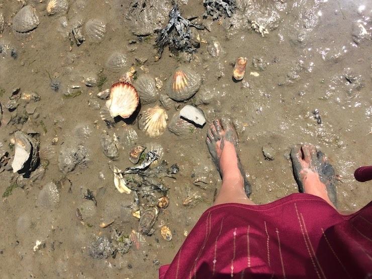 フランスの生牡蠣は日本と違う?ルイ14世も愛した、牡蠣の世界的名産地・カンカルを訪ねて 7番目の画像
