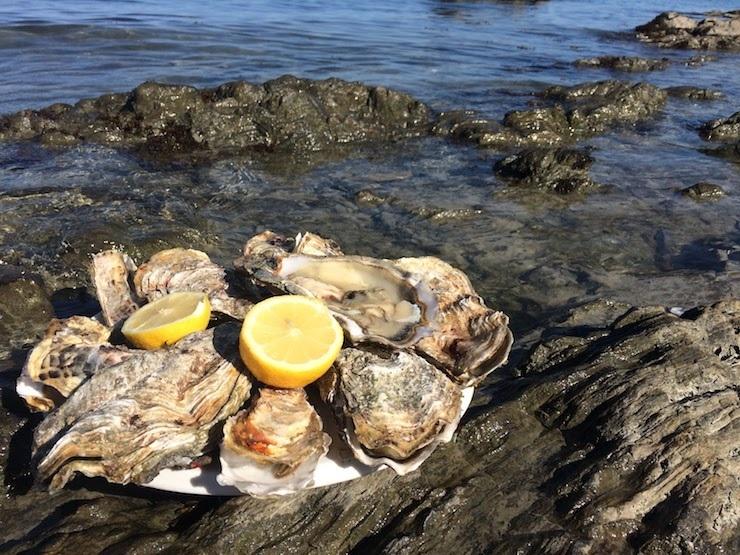 フランスの生牡蠣は日本と違う?ルイ14世も愛した、牡蠣の世界的名産地・カンカルを訪ねて 9番目の画像