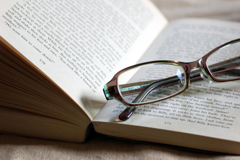 英語初心者におすすめしたい洋書!英語の語彙を増やしたい人におすすめの洋書3選 2番目の画像