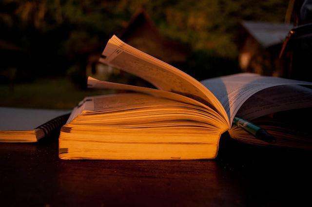 読みたい部分だけカンタン購入。忙しくて本を読めない人にピッタリの電子書籍サイト「パピレスプラス」 1番目の画像