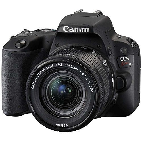 カメラを趣味にするメリット&用途別おすすめ一眼レフ3選:人に誇れる趣味「カメラのすゝめ」決定版 6番目の画像