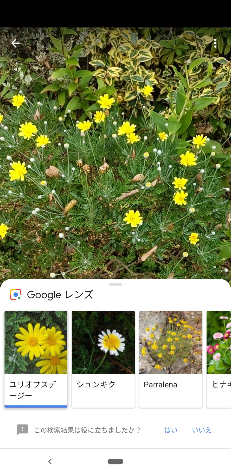 西田宗千佳のトレンドノート:最新スマホの「カメラ」が示す、「スマホの先にある未来」 6番目の画像