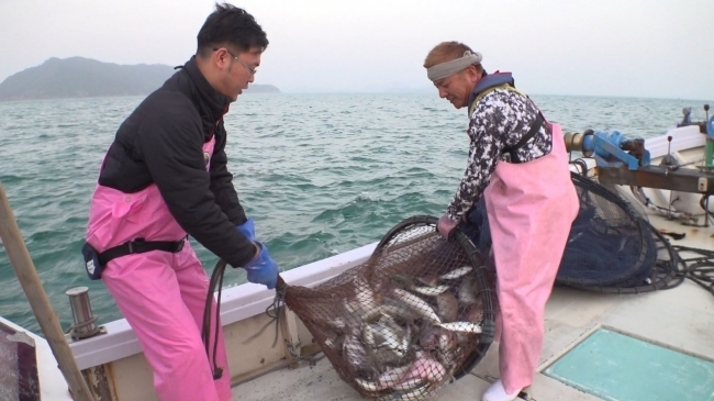 くら寿司の魚バイヤー、商品開発の舞台裏に密着!─サラリーマン番組案内 4番目の画像