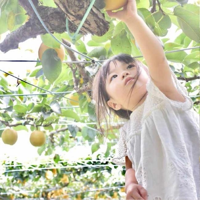 JR南武線沿いの「おいしい」写真のコンテストが開催!川崎・稲城・府中・国立・立川の5市が連携 2番目の画像