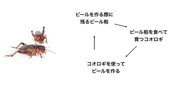 コオロギを原料に使った「コオロギビール」が誕生、クリーミーな口当たりに重厚感ある味わい 4番目の画像