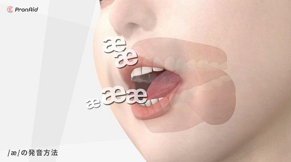 舌の動きまで丸見え!英語の発音方法を3DCGで再現した体験型英語発音教材「ネイティブの口」が登場 3番目の画像
